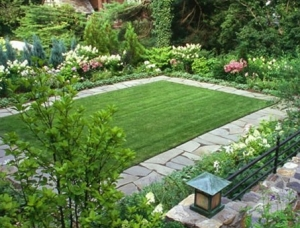 Lawns & Borders